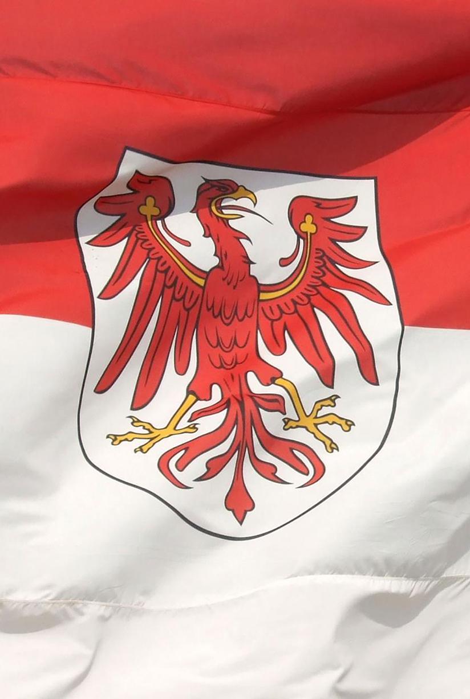 Brandenburger Fahne